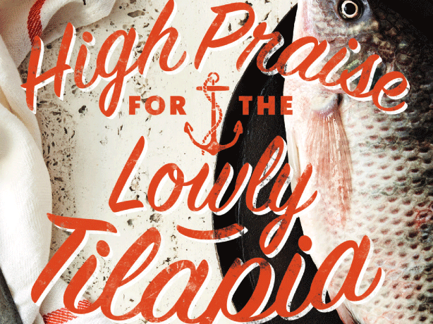 high-praise-lowly-tilapia.png