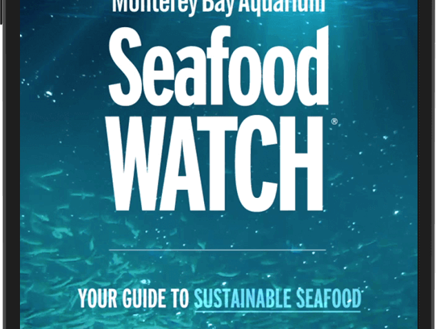 2 Apps That Help You Make Better Seafood Choices